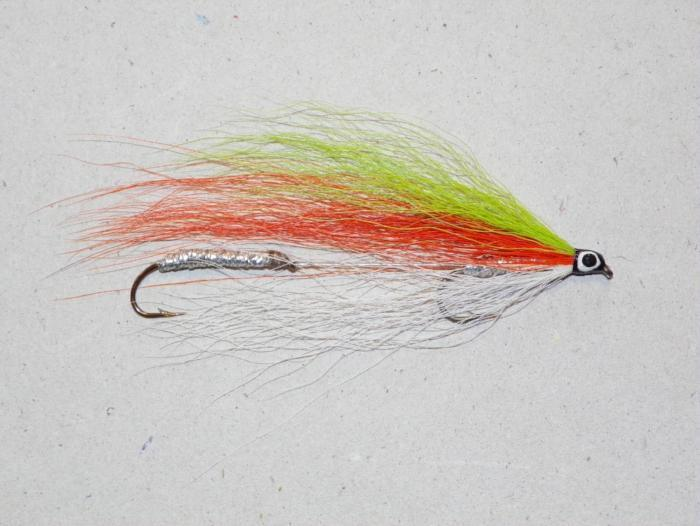 tri color from Rangeley Maine fly fishing shop