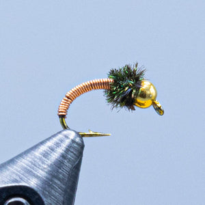 metallic caddis at a maine fly shop