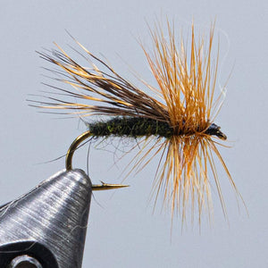 alder fly at a maine fly shop