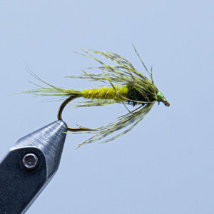 ap emerger at a maine fly shop