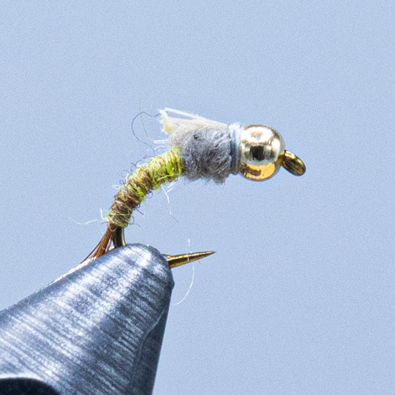 barr emerger at a maine fly shop