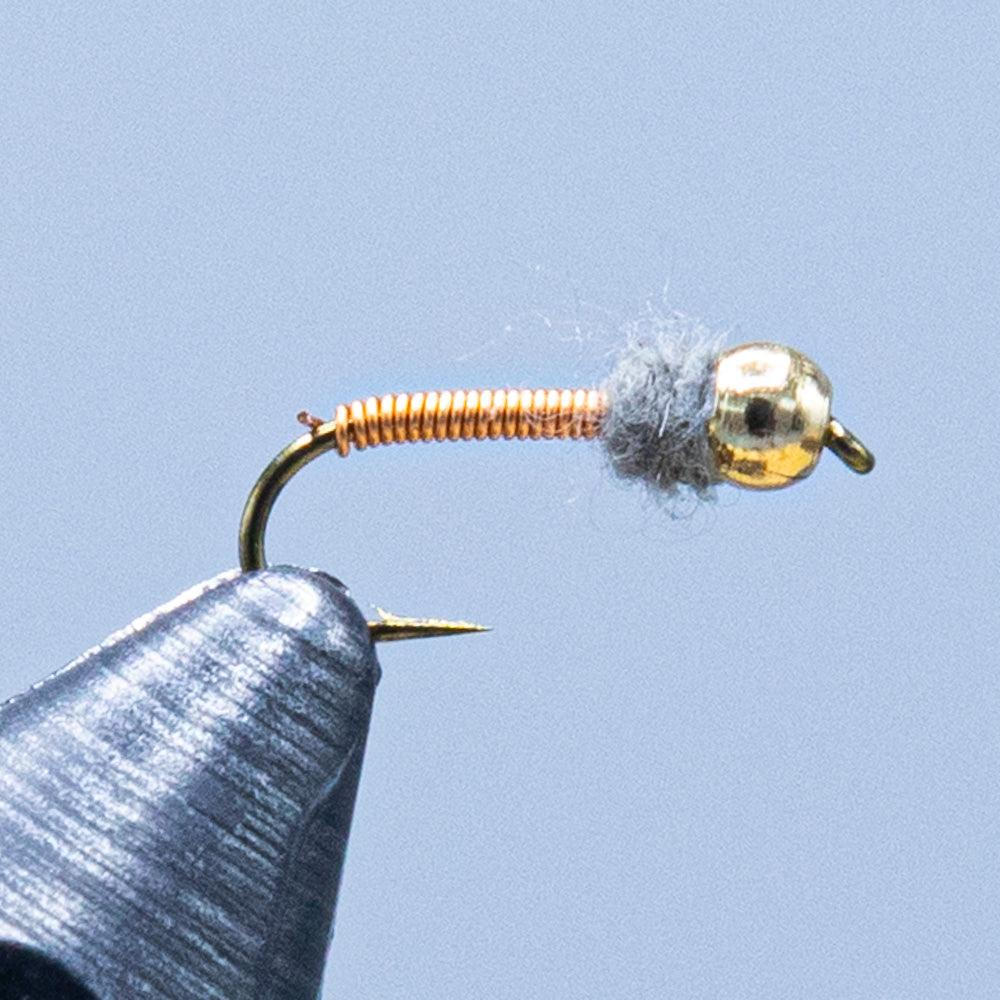 brassie at a maine fly shop
