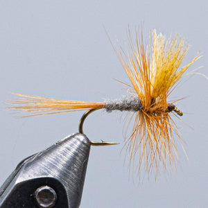 dark cahill fly gray body mayfly with dark hackle Good for Hendricksons