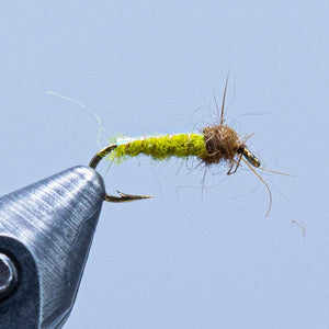 electric caddis at a maine fly shop