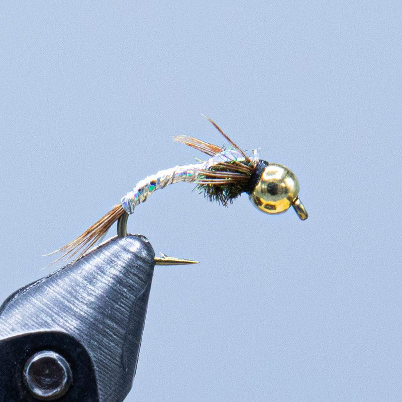 lightning bug at a maine fly shop