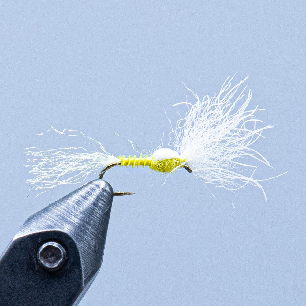 quill body emerger at a maine fly shop