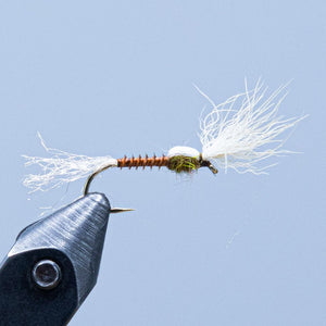 quill body at a maine fly shop