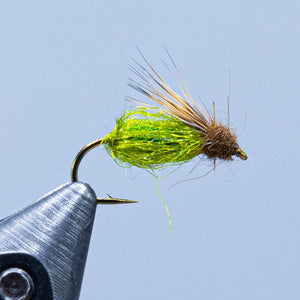 sparkle pupa emerger at a maine fly shop