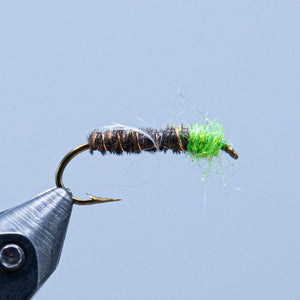 cased caddis at a maine fly shop
