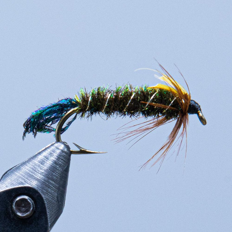 zug bug at a maine fly shop