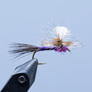 purple haze at a maine fly shop