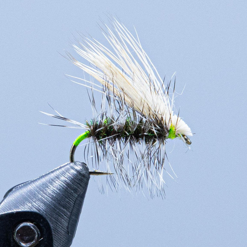 peacock caddis at a maine fly shop
