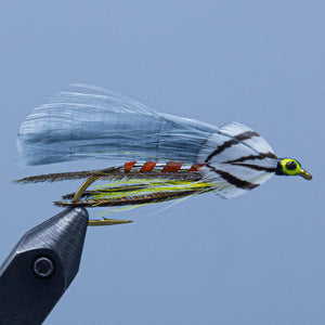 Gray Ghost at a maine fly shop