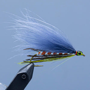 gray ghost marabou at a maine fly shop