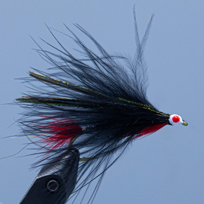 black marabou at a maine fly shop