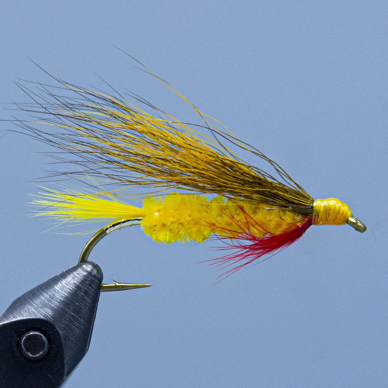 edson tiger dark at a maine fly shop