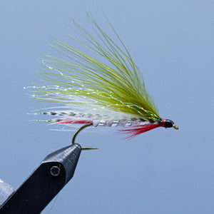 an olive and white  Dam wammy fishing fly from the maine fly shop
