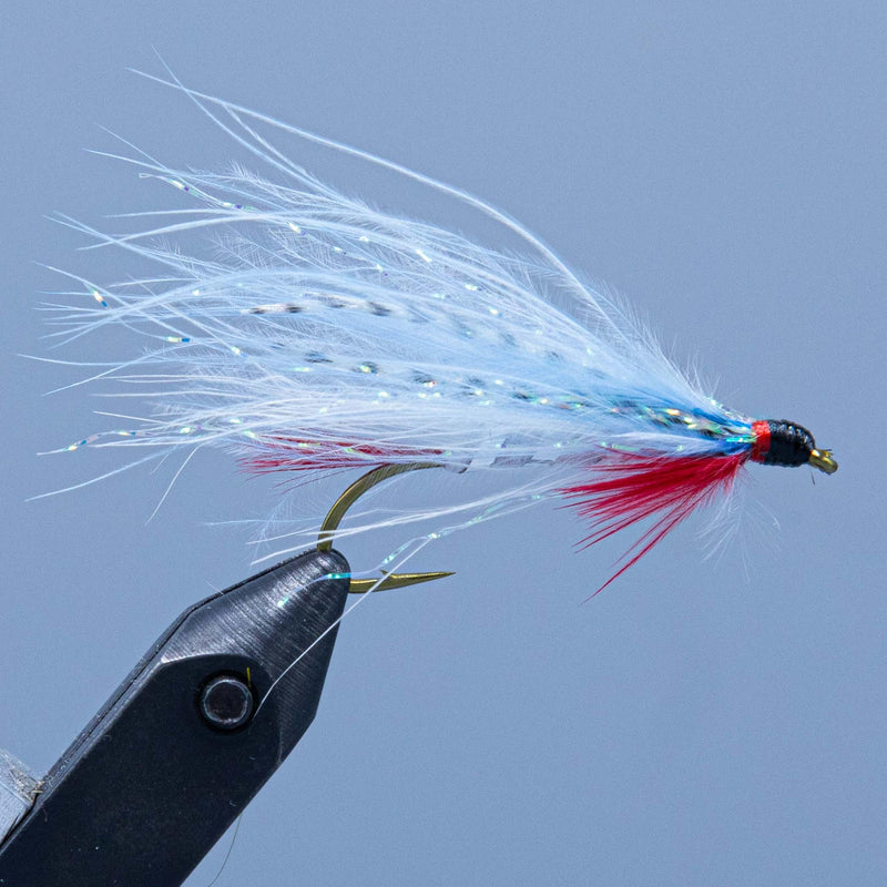 a dam wammy fishing fly with light blue wing tied for a Maine Fly Shop