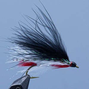 A black marabou version of the Dam Wammy streamer fly created by Wes Miller and sold in a Rangeley Maine Fly Shop