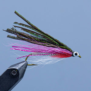 A peacock and lavender streamer fly with a red throat, the Governor Aiken is tied for a Rangeley Fly Shop