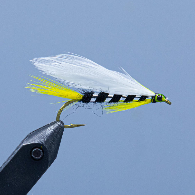 Black Ghost featherwing streamer fly from the Rangeley Region Shop Shop