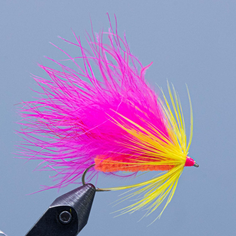 Bright pink yellow and orange make this streamer fly for a Rangeley Maine Fly Shop