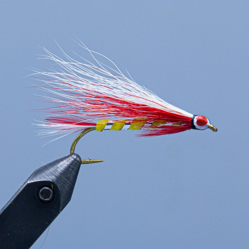 Parmachenee Belle streamer fishing fly at a Maine fly shop
