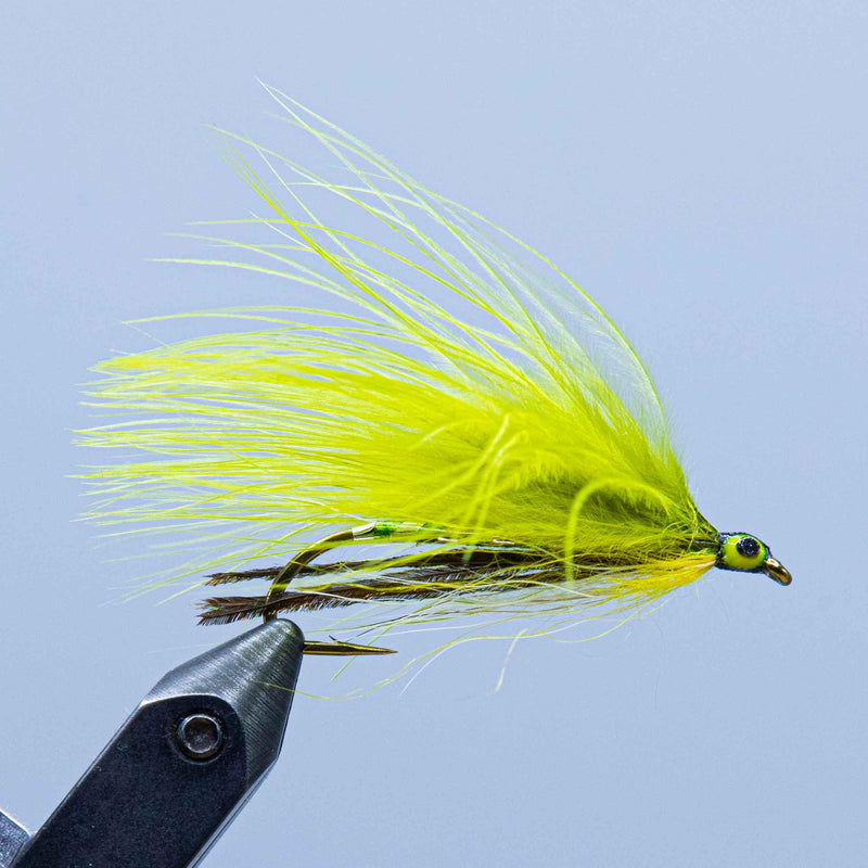 green ghost at a maine fly shop
