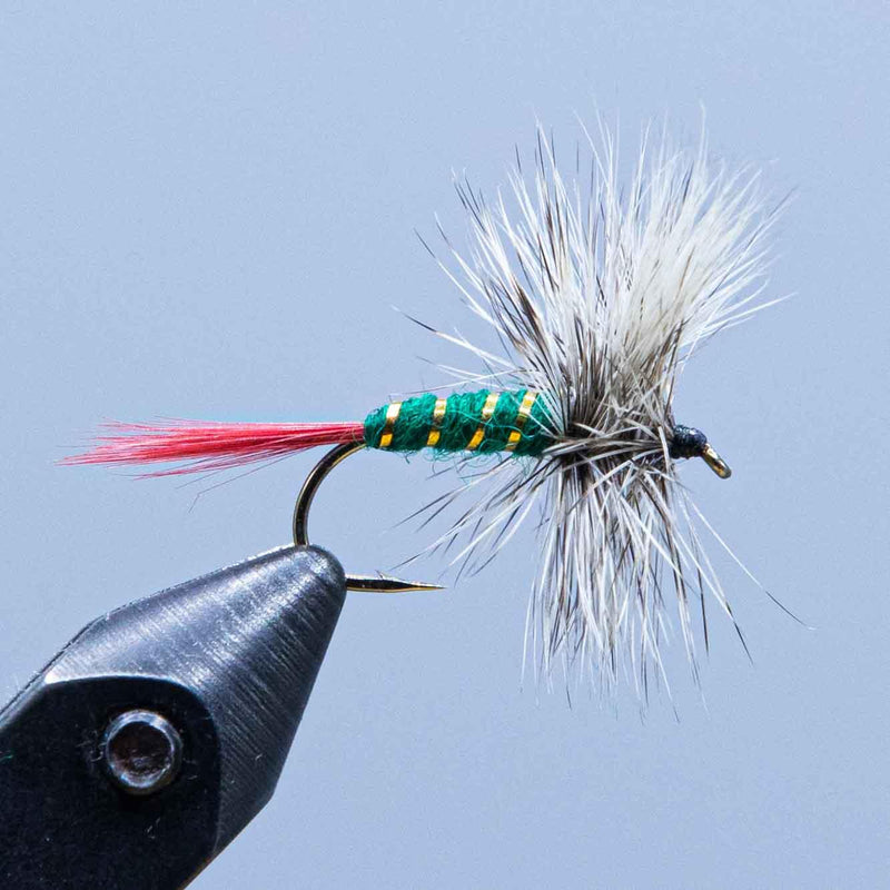 grizzly king wulff at the rangeley fly shop
