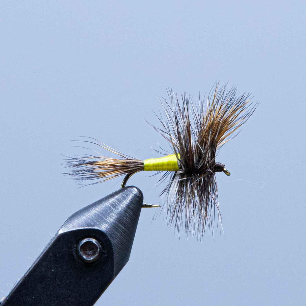 grizzly wulff at a maine fly shop