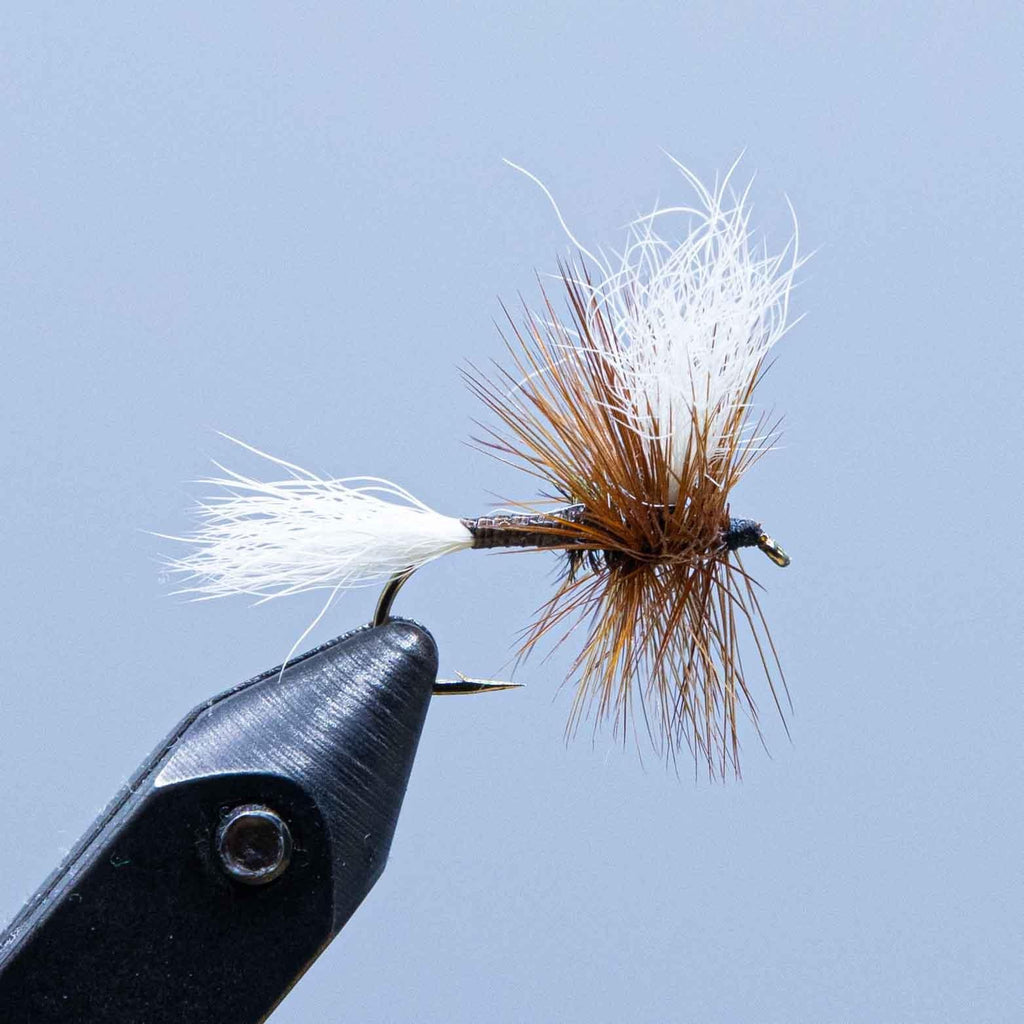 H&L variant at a maine fly shop