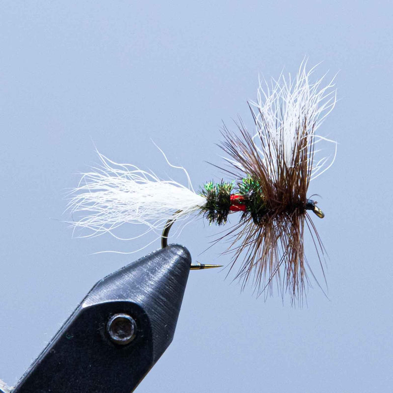 royal wulff at a maine fly shop