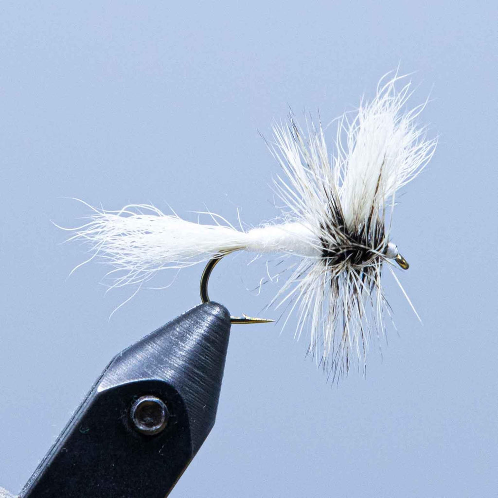 white wulff at a maine fly shop