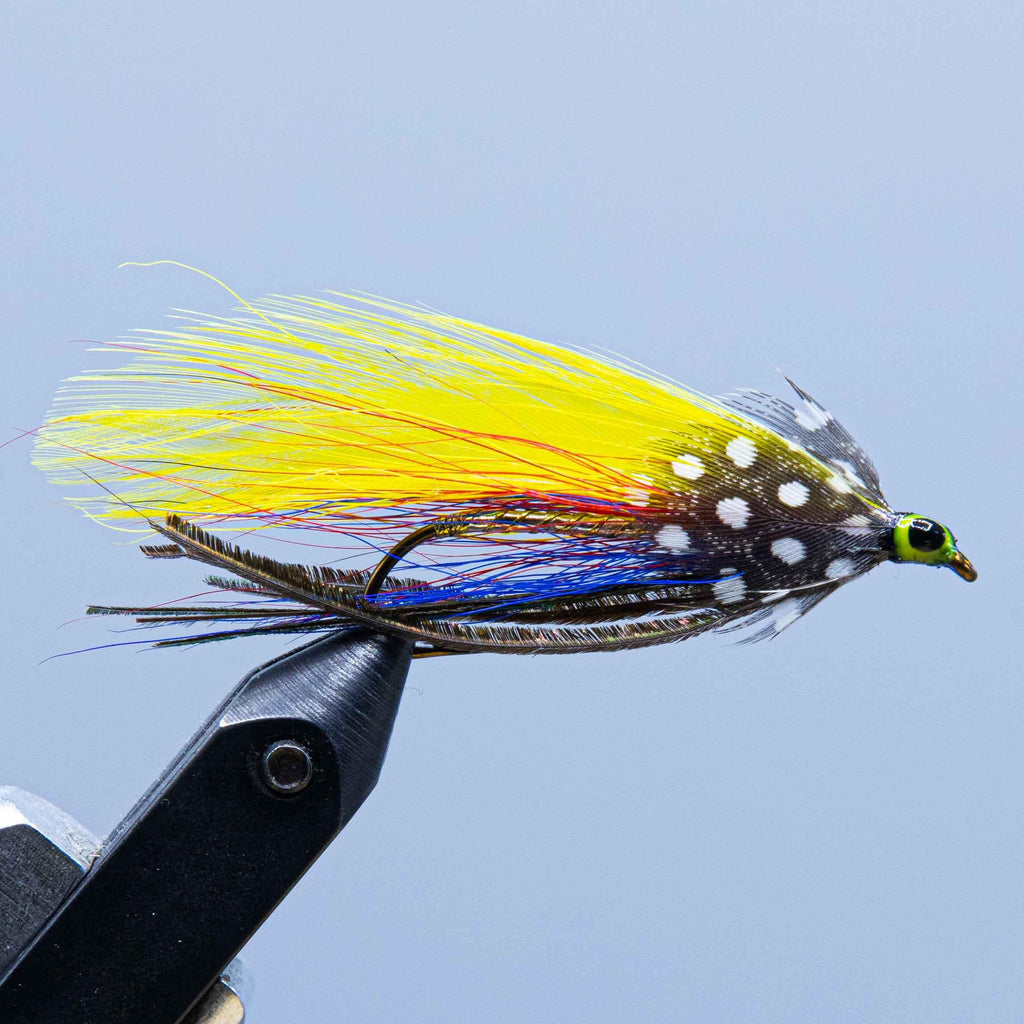 footer special at a maine fly shop