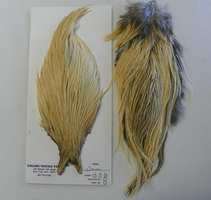 cream colored neck and saddle hackles from Collins Hackle Farm