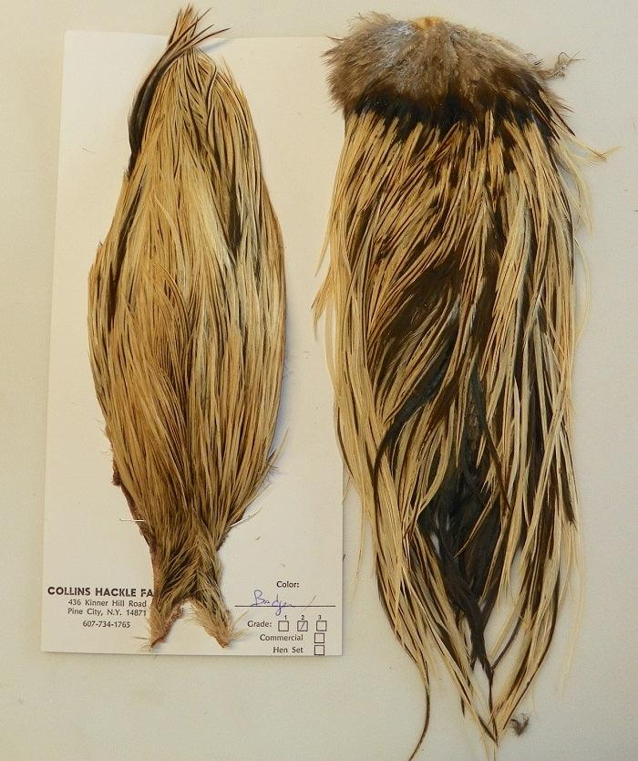collins golden badger neck and saddle feathers
