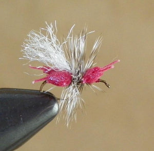 Ken's Crazy Ant Red from Rangeley Maine fly fishing shop