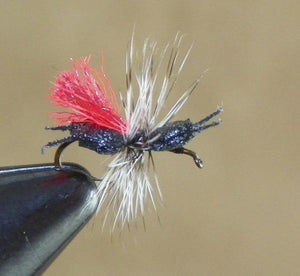 Ken's Crazy Ant High Vis from Rangeley Maine fly fishing shop