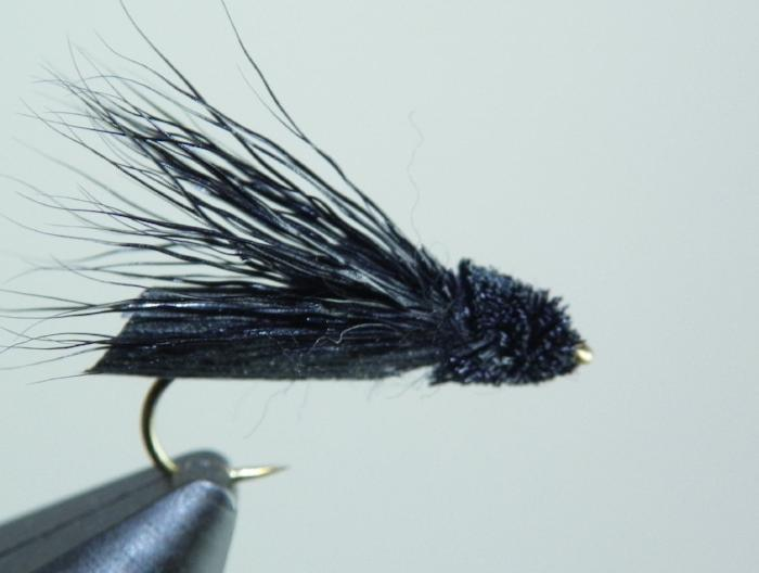 Letort Cricket from Rangeley Maine fly fishing shop