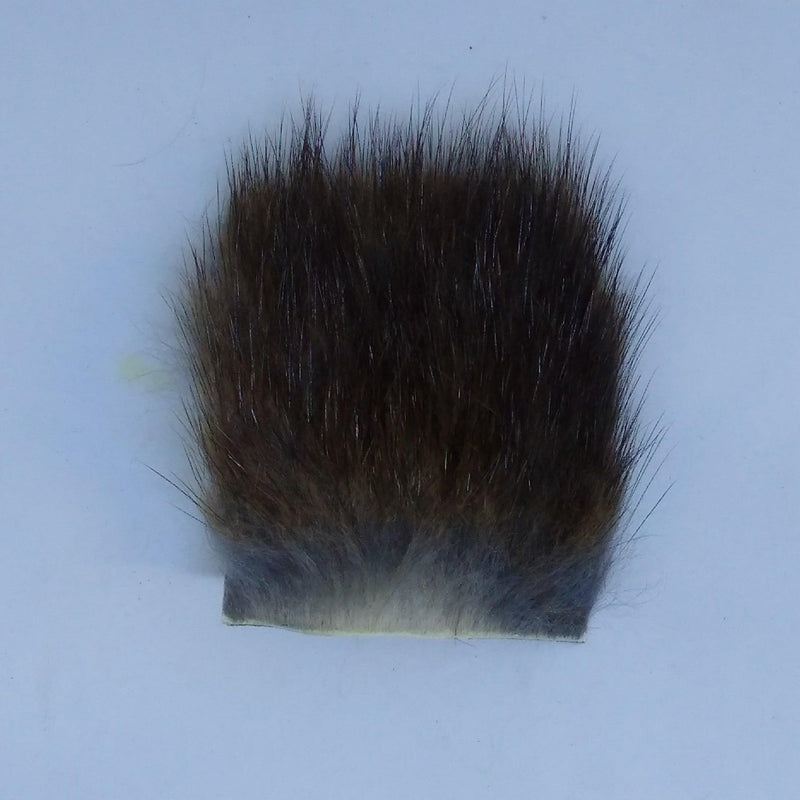 muskrat at a maine fly dhop