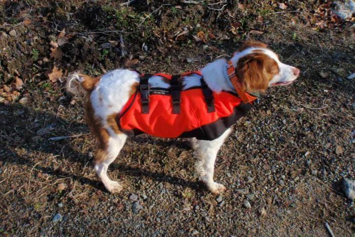 sylmar body guard vest from Rangeley Maine fly fishing shop