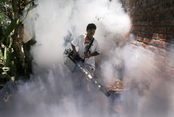 Fogging - spraying insecticides to fight mosquitos carrying Zika and dengue