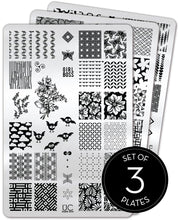 Load image into Gallery viewer, UberChic Stamping Plates - Collection 15