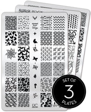 Load image into Gallery viewer, UberChic Stamping Plates - Collection 24