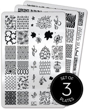 Load image into Gallery viewer, UberChic Stamping Plates - Collection 26