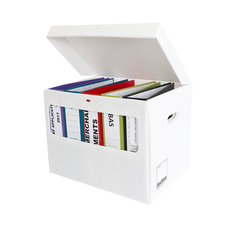 Lever Arch File Archive Storage Box
