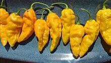 Organic  - Yellow Bhut Jolokia (Ghost Pepper)