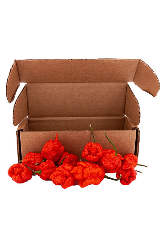 Fresh Smokin' Ed's Carolina Reapers® - 12 Count - Shipping included!