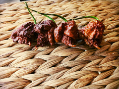 Organic- CHOCOLATE  Smokin' Ed's Carolina Reaper® Seeds