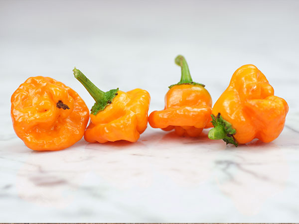 Organic -  Scotch Bonnet Peach